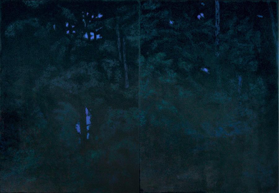 180 x 260 cm, 2014, col. privée