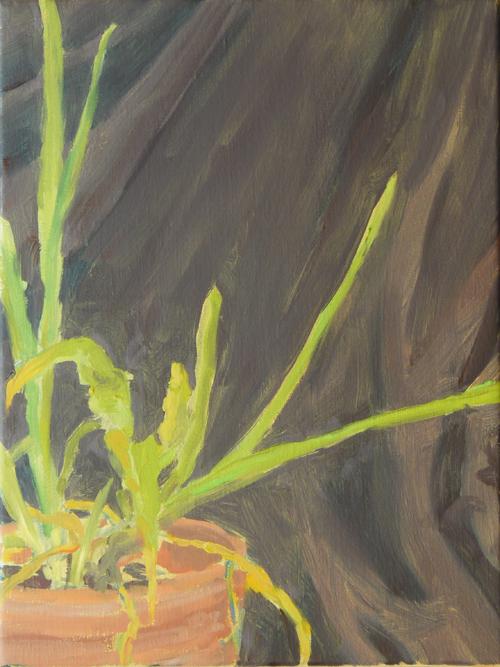 huile sur toile, 40x30 cm